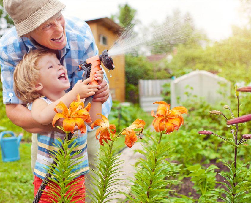 BPMpathway - orthopaedic analysis - gardening